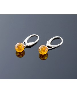 Honey amber earrings, 7mm