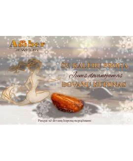 Special Amber gift certificate/Christmas